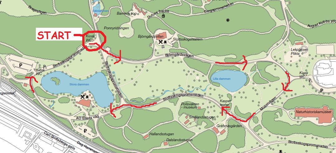 slottsskogen karta